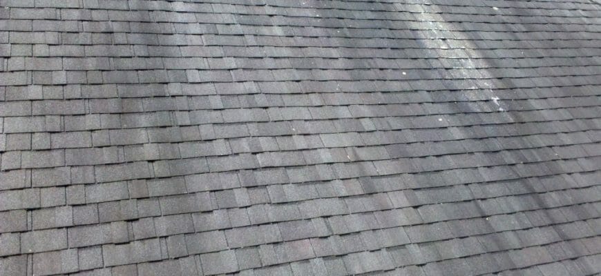 Roof Cleaning service seattle | All Clean